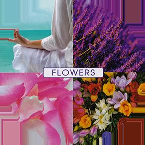 Tratamiento Facial Take a Breath de Perlas y Oro en Sizare, tu Centro de belleza en Fuenlabrada